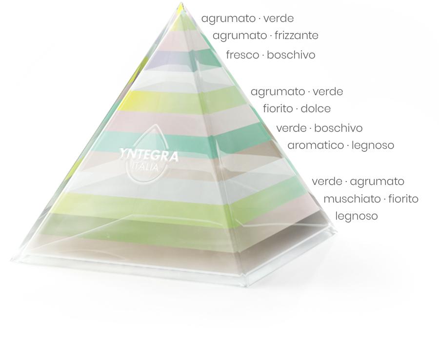 Fragranza Lime